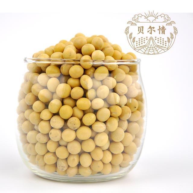 非转基因 高蛋白大豆(打豆浆用)  大兴安岭特产  豆中之王  绿色的牛乳