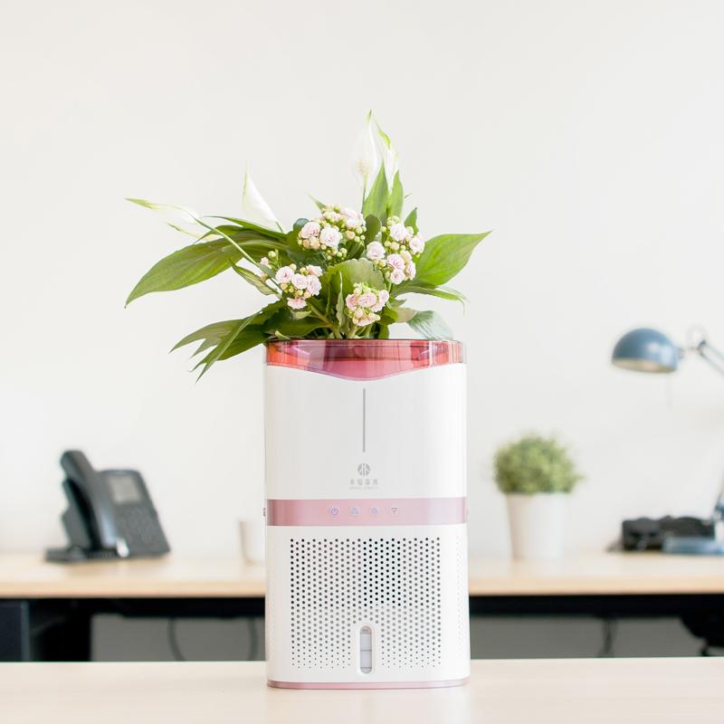 小幸福森林空气净化器 - 除醛彻底、清华科研出品